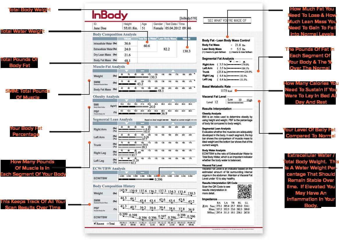 inbody mobile